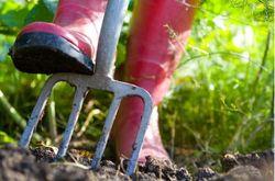 digging-garden-home